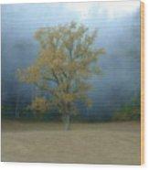 Autumn Fog In Cades Cove Wood Print