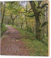 Autumn Forest Path - Wood Print