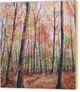 Autumn Forrest Wood Print