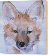 Autumn Fox Wood Print