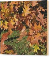 Autumn Fragrance Wood Print
