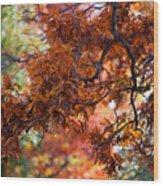 Autumn Fury Wood Print