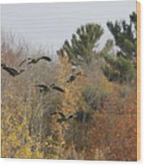 Autumn Geese Wood Print