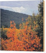 Autumn Glory And Mountain Cathedral Wood Print