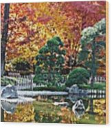 Autumn Glow In Manito Park Wood Print