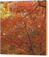 Autumn Gold Poster Wood Print