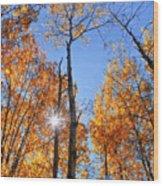 Autumn Gold Sunburst Wood Print