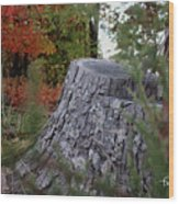 Autumn Gone-by Wood Print
