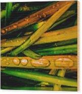 Autumn Grassy Rain Drops Wood Print