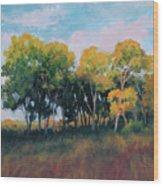 Autumn Grove Wood Print