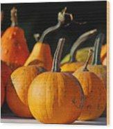Autumn Harvest Gourds Wood Print