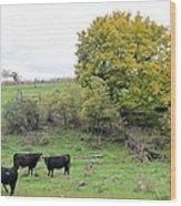 Autumn Herd Wood Print