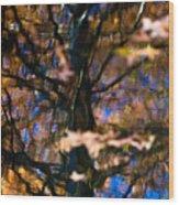 Autumn Impressions Wood Print