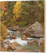Autumn In Alpine Loop Wood Print
