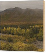 Autumn In August Brooks Range Alaska Wood Print