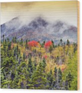 Autumn In Baxter State Park Maine Wood Print