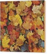 Autumn In Canada Wood Print
