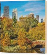 Autumn In Central Park 2 Wood Print