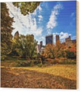 Autumn In Central Park Wood Print