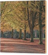 Autumn In Clifton, Bristol Wood Print
