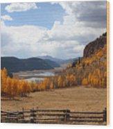 Autumn In Colorado Wood Print