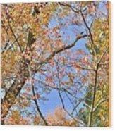 Autumn In Full Swing Wood Print