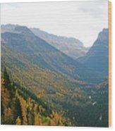 Autumn In Glacier Wood Print