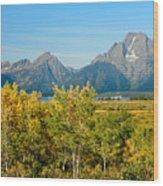 Autumn In Grand Teton National Park Wood Print
