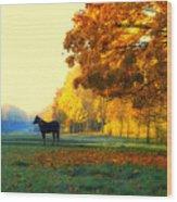 Autumn In Kathrines Way Wood Print