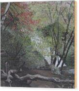 Autumn In Japan Wood Print