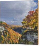 Autumn In Letchworth Wood Print