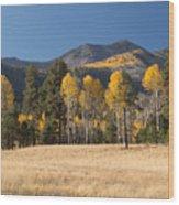 Autumn In Lockett Meadow Wood Print