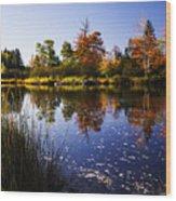 Autumn In Maine Usa Wood Print