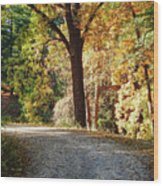 Autumn In Michigan Wood Print