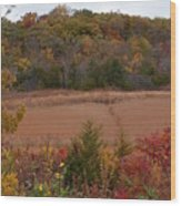 Autumn In Missouri Wood Print
