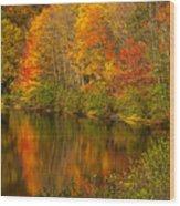 Autumn In Monroe Wood Print