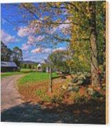 Autumn In Montpelier Wood Print