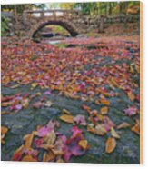 Autumn In New England Wood Print