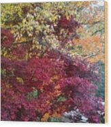 Autumn In October Wood Print