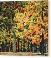 Autumn In Olde Virginia Wood Print