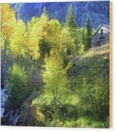 Autumn In Ophir - Colorado - Aspens Wood Print