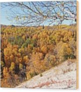 Autumn In Riding Mtn National Park Wood Print