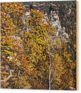 Autumn In Saxon Switzerland Wood Print