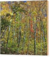 Autumn In Schooley's Mountain Park 2 Wood Print