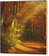 Autumn In Siebengebirge Wood Print