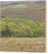 Autumn In Slope County Wood Print