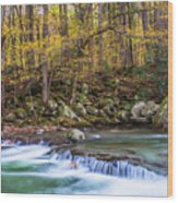 Autumn In Smoky Mountains National Park  Wood Print