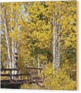 Autumn In Teton National Park Wood Print