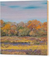 Autumn In The Adirondack Mountains Wood Print