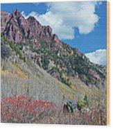 Autumn In The Aspen Hills Wood Print